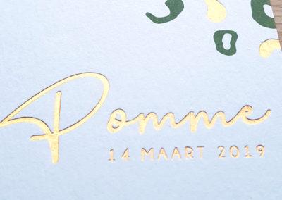 Geboortekaart Pomme